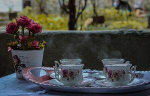 teacup photo